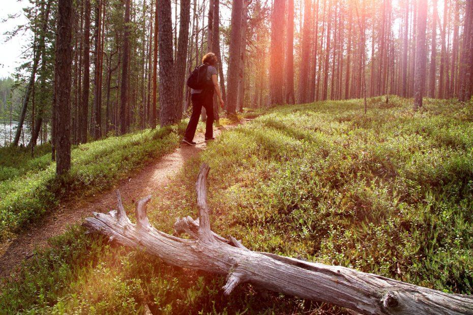 retkeilijä metsäpolulla